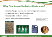 WSSA Lesson1 Slide5 180x130 - Herbicide-resistant Weeds Training Lessons