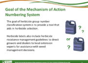 Slide17.PNG lesson2 180x130 - Herbicide-resistant Weeds Training Lessons
