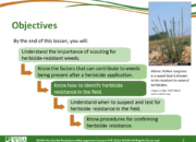 Slide2.PNG lesson4 180x130 - Scouting After a Herbicide Application and Confirming Herbicide Resistance