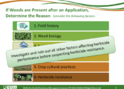 Slide6.PNG lesson4 180x130 - Herbicide-resistant Weeds Training Lessons